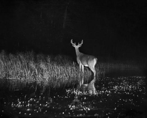 Gearhunting-digital-low-lighting-monocular-night-vision-dvr-recorder-devices-5x32-zoom-infrared-night-vision-video-optics-wg532- (9)